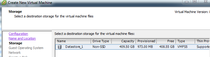 Select what datastore you would like to store your VM