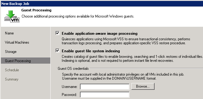 Veeam guest processing