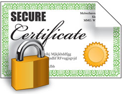 Create A Self Signed SSL Cert For Exchange Guide