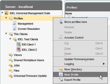 Create a browser profile in IGEL